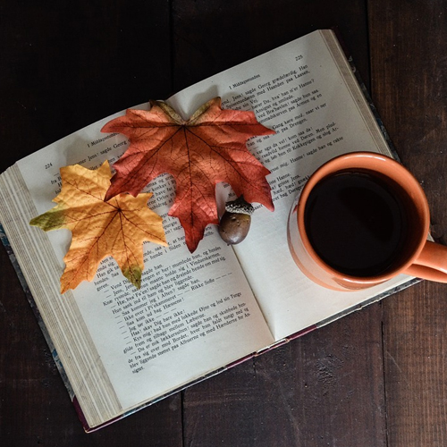 Cafe_D_Coffeehouse Lit-Our Favorite Books Of 2017